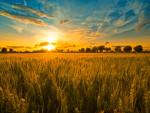 Agroturystyka mazowieckie